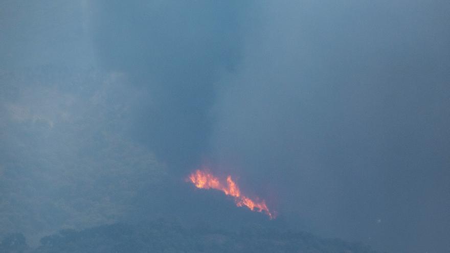 Dos bomberos heridos mientras trataban de sofocar las llamas en Málaga