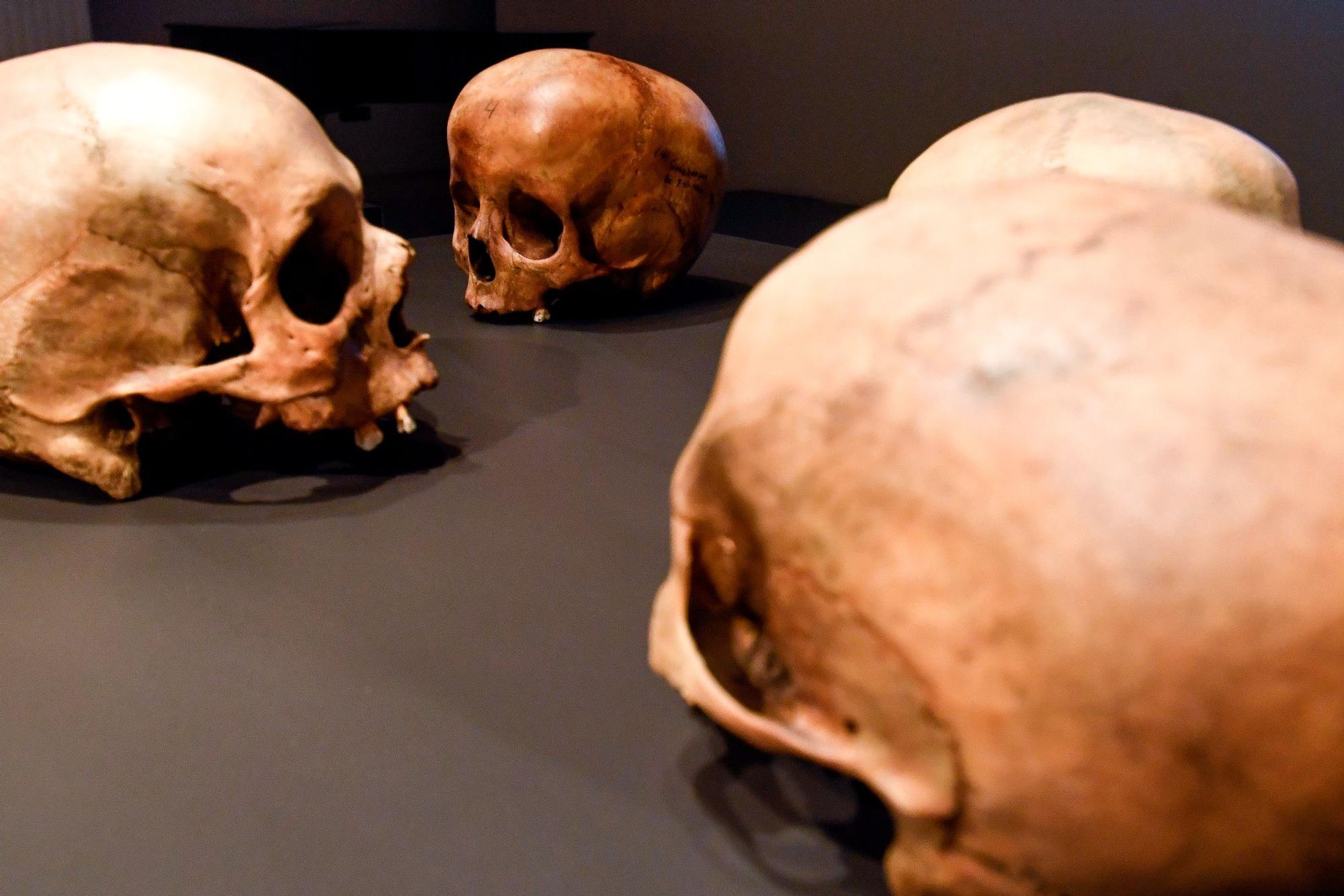 Exposición sobre los rituales aborígenes respecto a la muerte