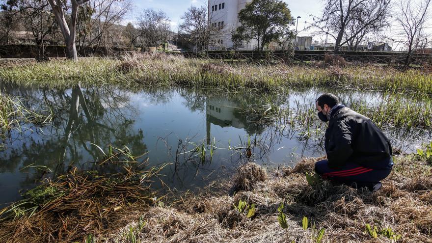 El ayuntamiento quiere bombear agua del Calerizo a la Ribera