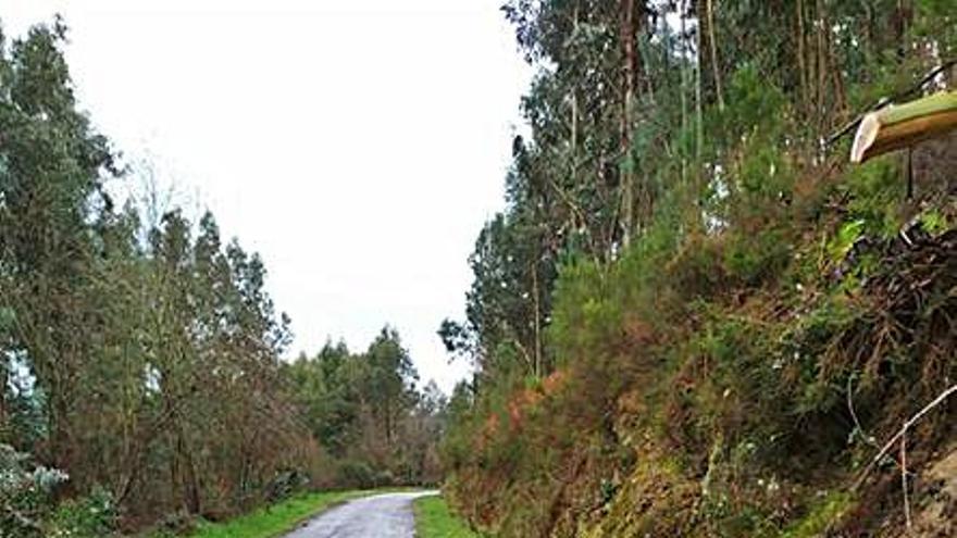 El PSOE urge la retirada de dos grandes rocas que invaden la carretera del pueblo de Nogueira