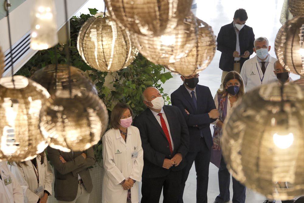 Luz para el 45 aniversario del Reina Sofía