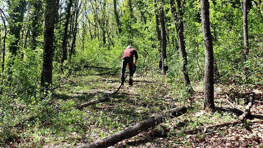 La nova associació forestal de la vall de Lord gestionarà 13.000 hectàrees