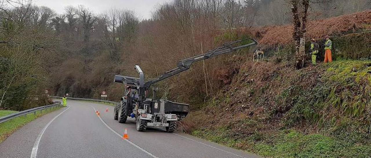 Operarios trabajan en la limpieza de los márgenes de una carretera.