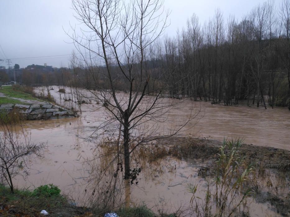 El riu Cardener a Sant Joan de Vilatorrada.
