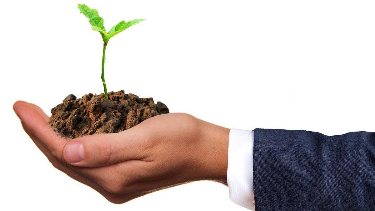 La economía circular, clave en la tarea de cuidar el medio ambiente.