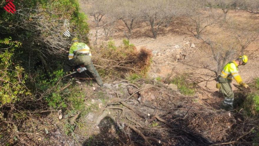 Los bomberos sofocan una pequeña reproducción del incendio forestal de Azuébar 10 días después