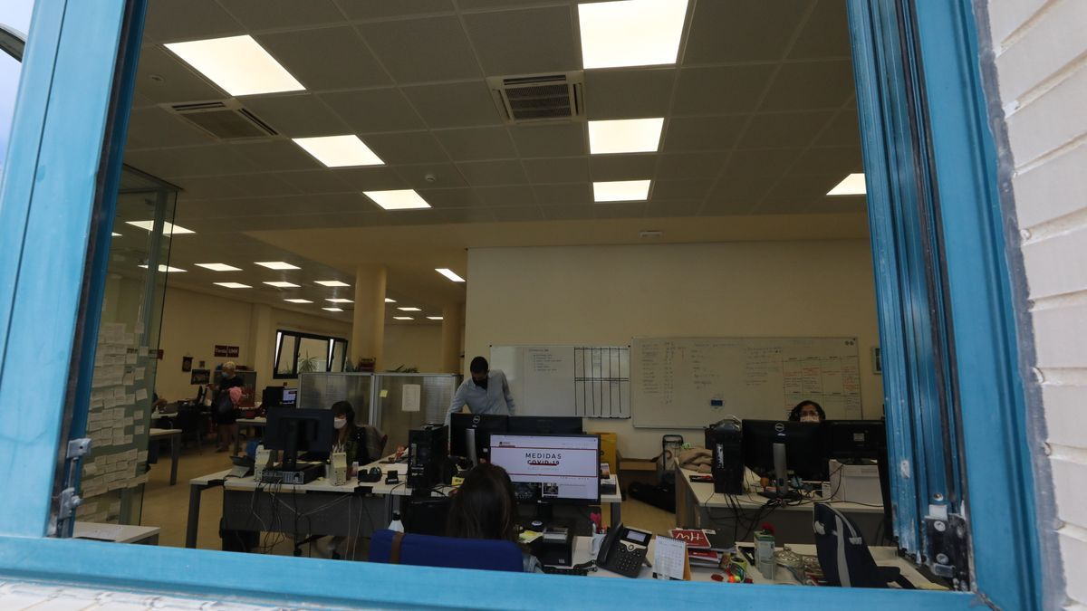 Personal de la UMH trabaja, ayer, con las ventanas abiertas para que se produzca una ventilación con corrientes naturales.