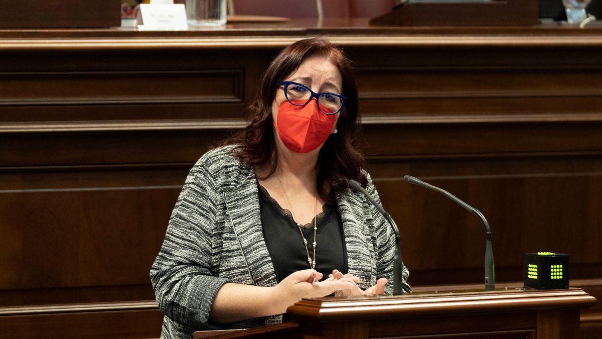 La consejera de Educación, Universidades, Cultura y Deportes del Gobierno de Canarias, Manuela de Armas