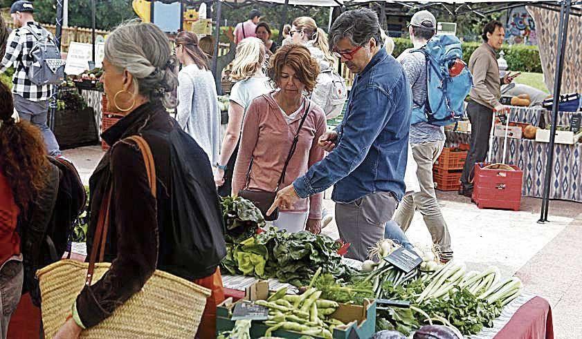 Compradores de producto ecológico en la plaza de los patines.