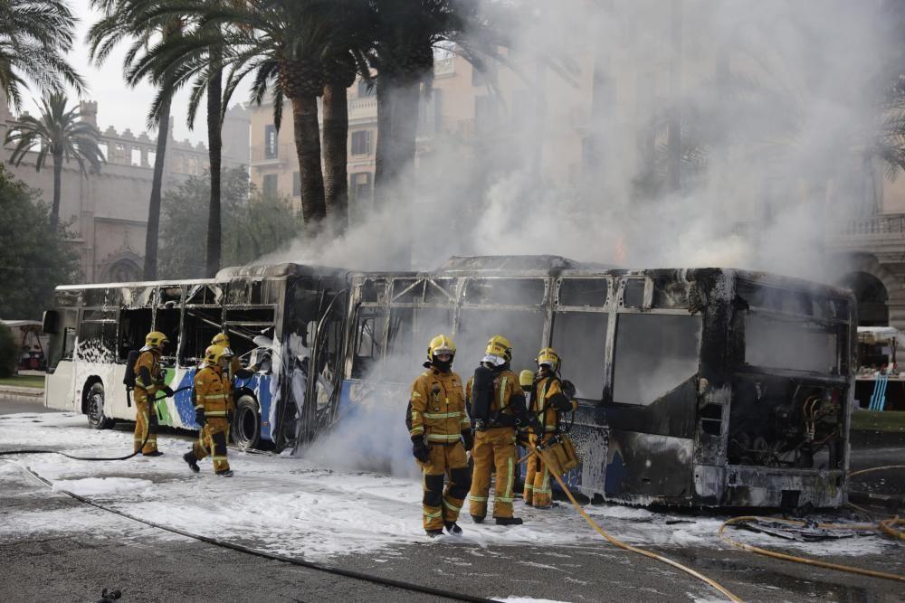 Stadtbus brennt vor der Kathedrale von Palma ab