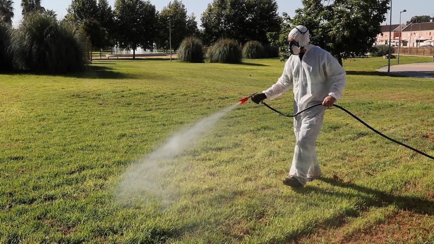 Extreman los controles para evitar que el virus del Nilo llegue a la Región