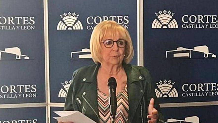 Carlos Fernández recoge el testigo de García Rioja en las Cortes autonómicas