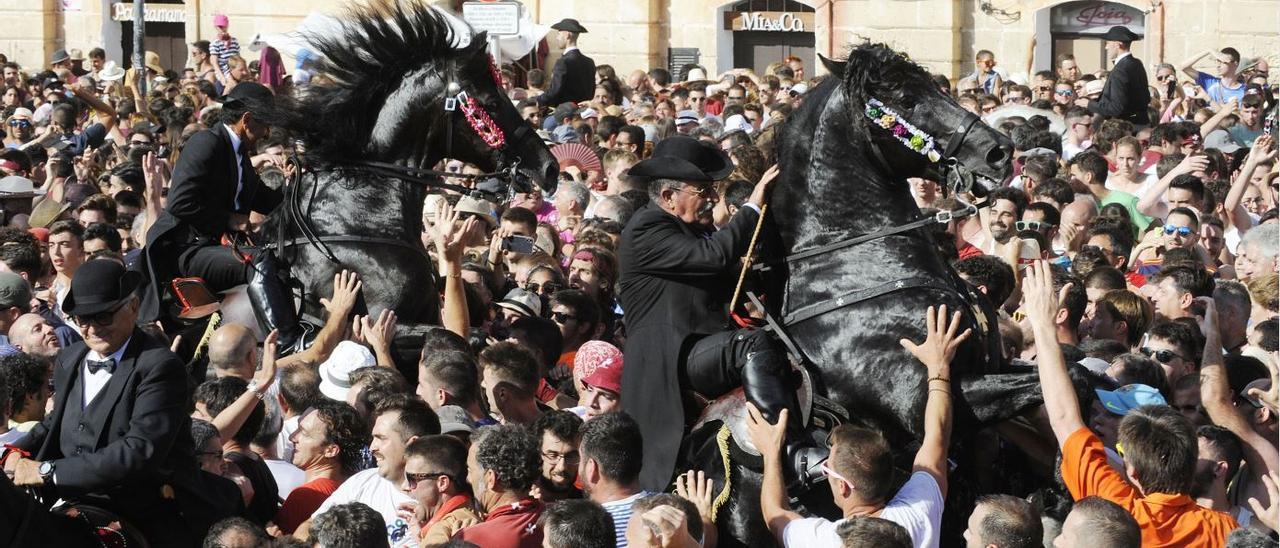 Caballos de raza menorquina entran a la plaza del Born de Ciutadella en el último Sant Joan que se celebró en 2019.