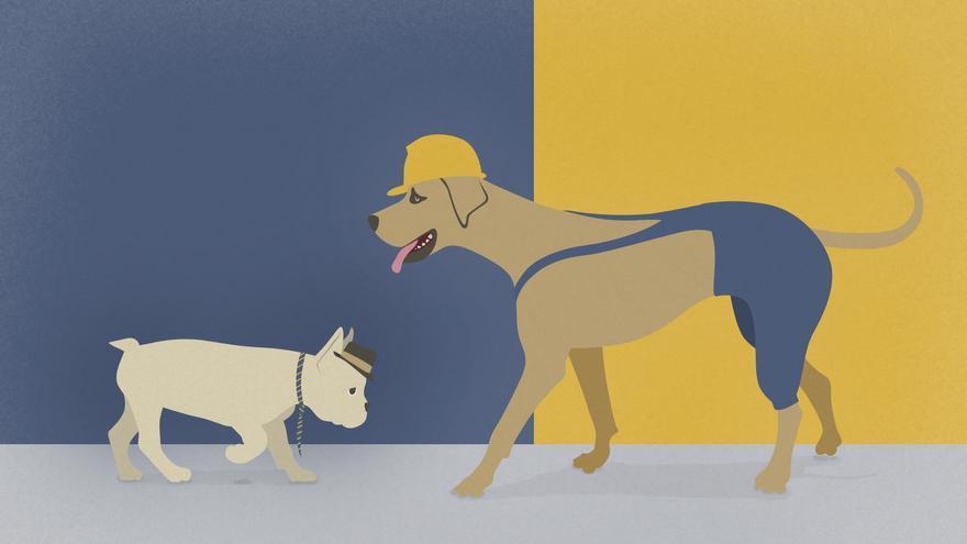 Más perros que niños
