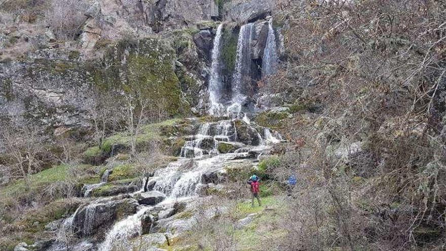 Zamora, destino nacional protagonista de la Feria de Naturaleza Naturcyl 2021