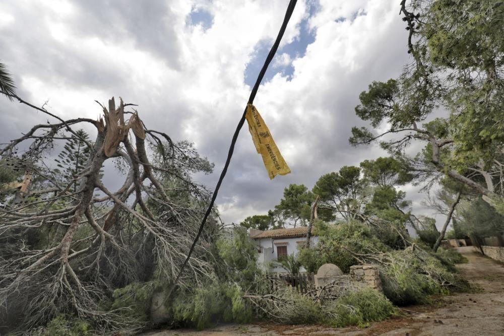Nach Unwetter: Mallorca räumt auf