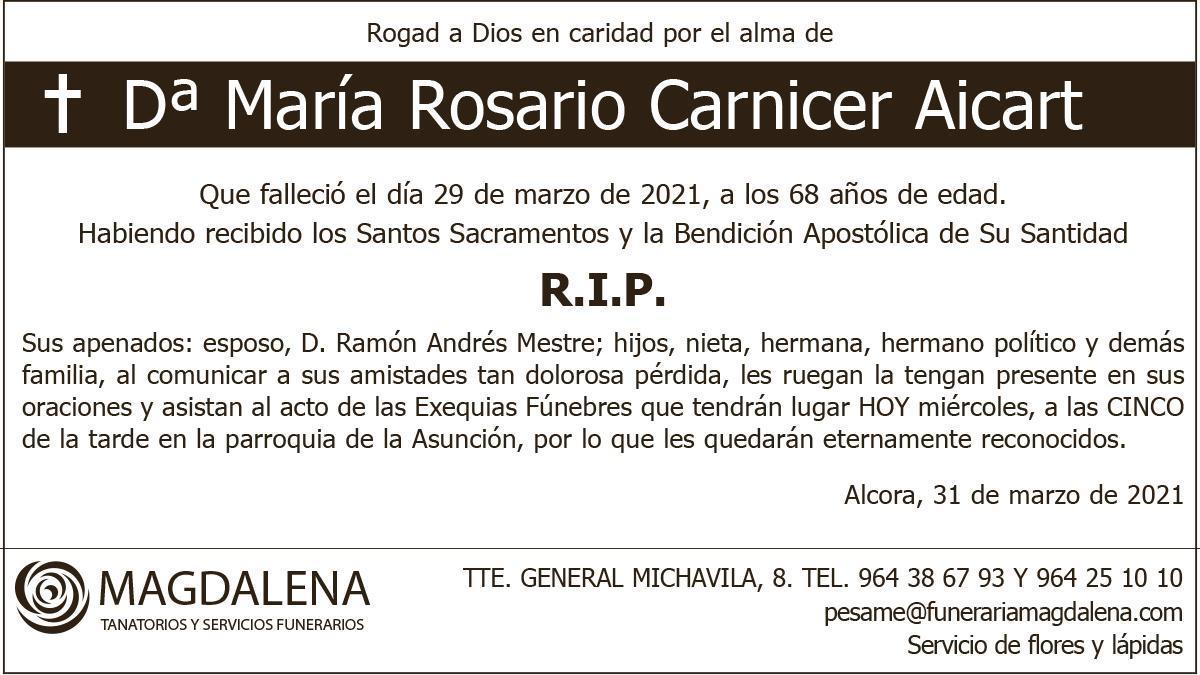 Dª María Rosario Carnicer Aicart