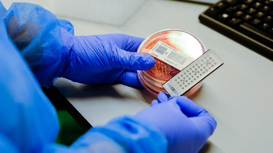 Canarias eleva a 72 los pacientes con el virus tras registrar 14 casos importados
