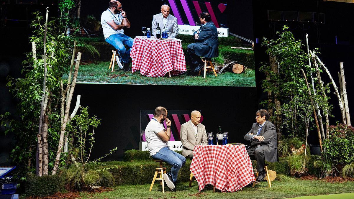 The Wine Edition, en Madrid Fusión, reunió al periodista Juancho Asenjo y a los enólogos Antonio Tomás Palacios y Tao Platón. | MADRID FUSIÓN