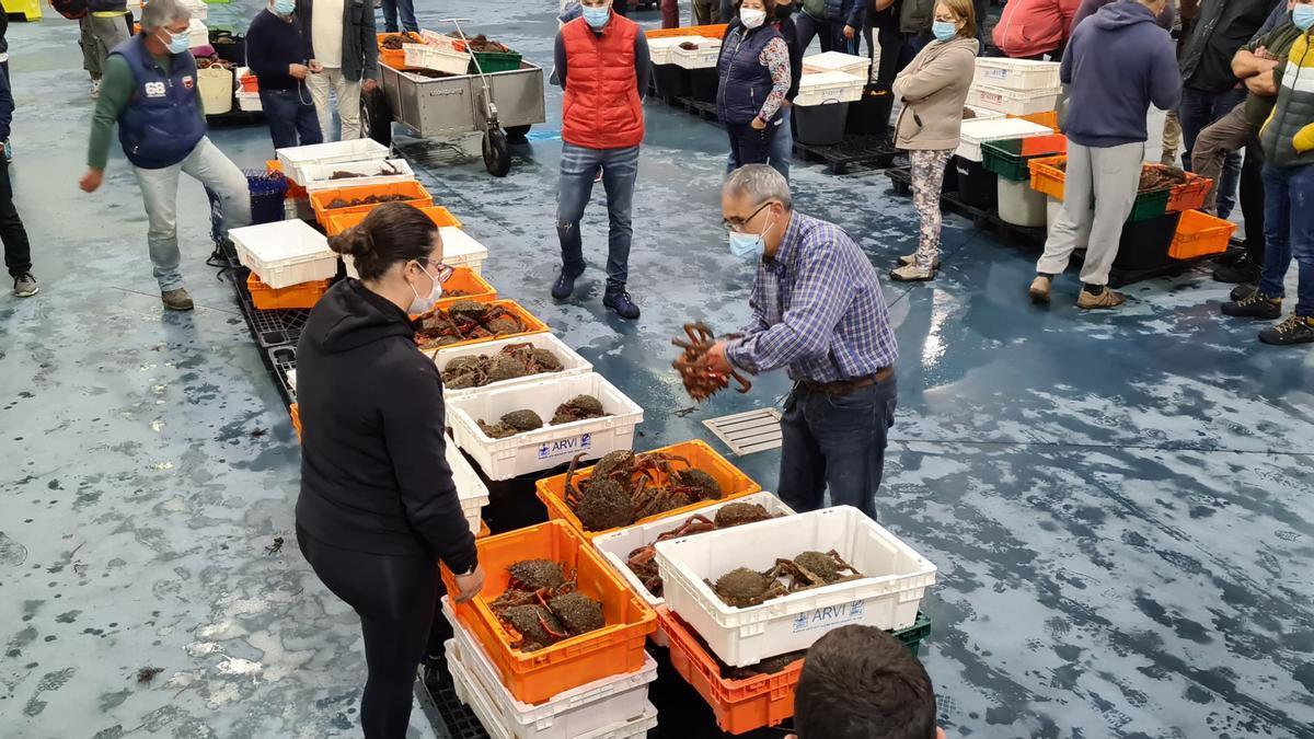 Juan Miguel Canel González, el comprador de la cetárea asturiana asentada en Viavélez, selecciona el centollo en la lonja de O Grove, ayer