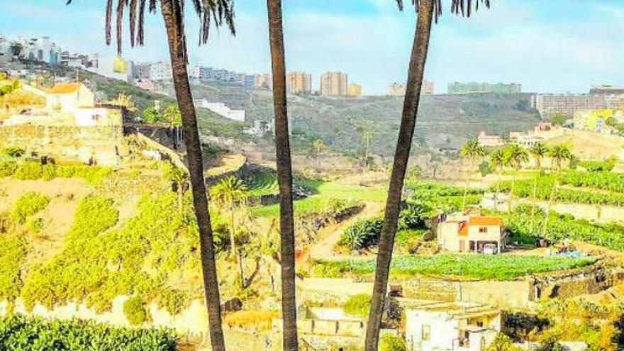 La ciudad compra terrenos en la periferia para reforestar y crear espacios de ocio