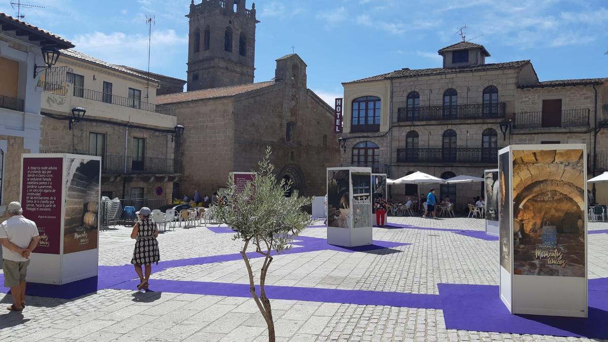Dos personas siguen la exposición sobre el patrimonio de bodegas instalada en la Plaza Mayor de Fermoselle
