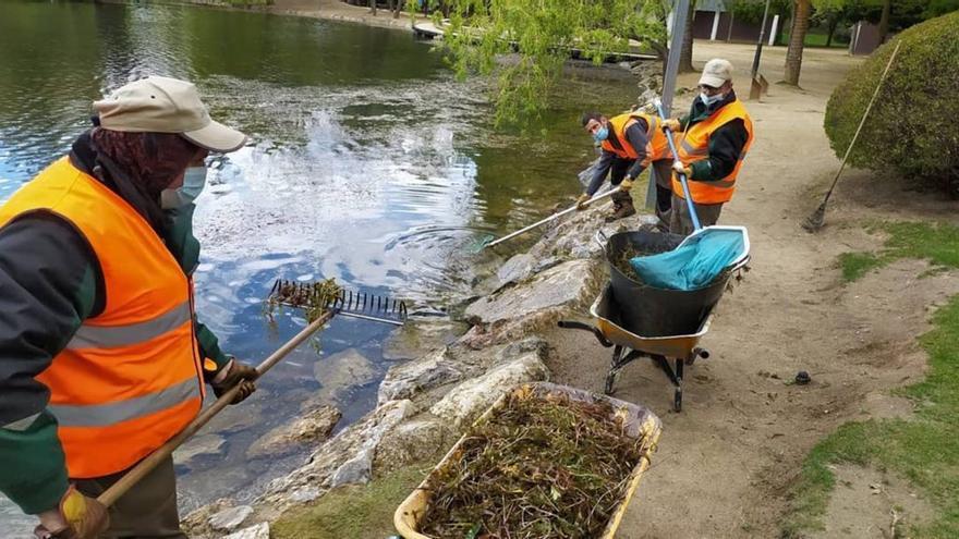 L'última neteja de l'estany de Puigcerdà hi genera unes algues bones per al seu ecosistema