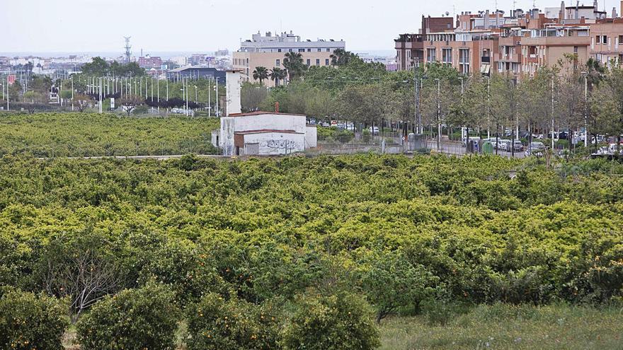 Una inversión de 294.000€ permitirá ampliar el riego inteligente en Sagunt