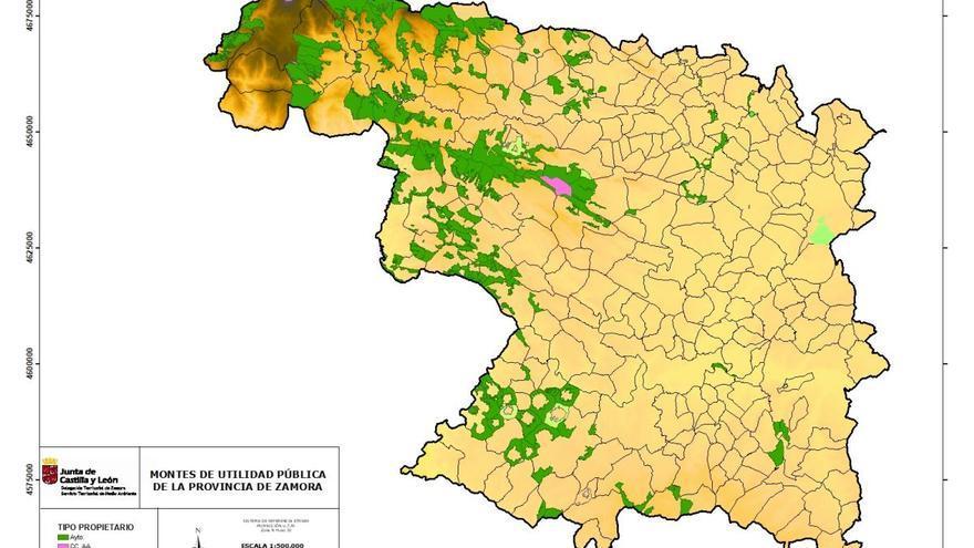 El monte Folgoso, de Manzanal de Arriba, declarado de utilidad pública en Zamora