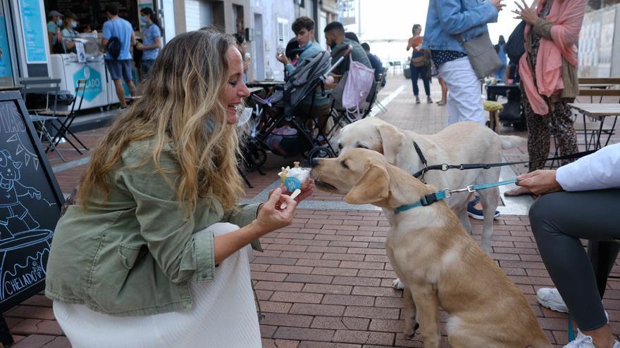 Una heladería de la Cícer vende entre sus productos helados aptos para perros