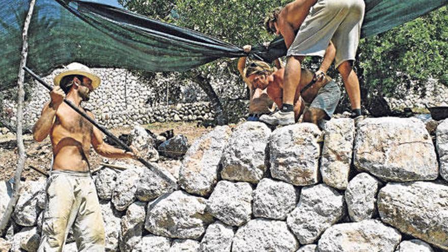 Trockensteinmauern: Neue Zunft, alte Kunst