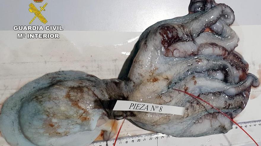 Sorprendidos pescando ilegalmente en La Azohía