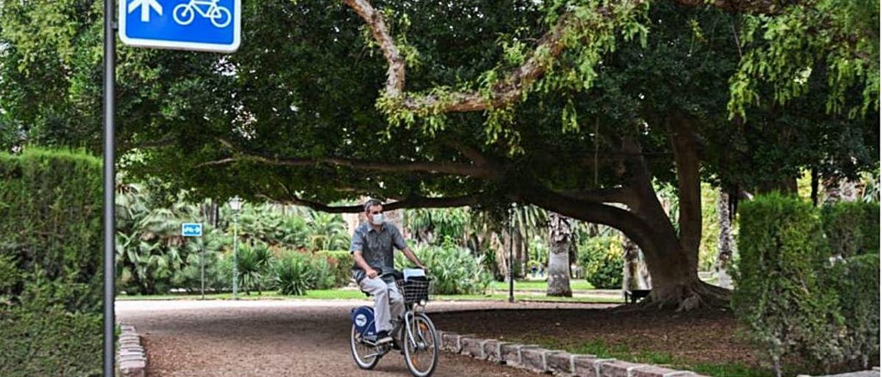 Señalizan el itinerario de Viveros que recorren cientos de ciclistas