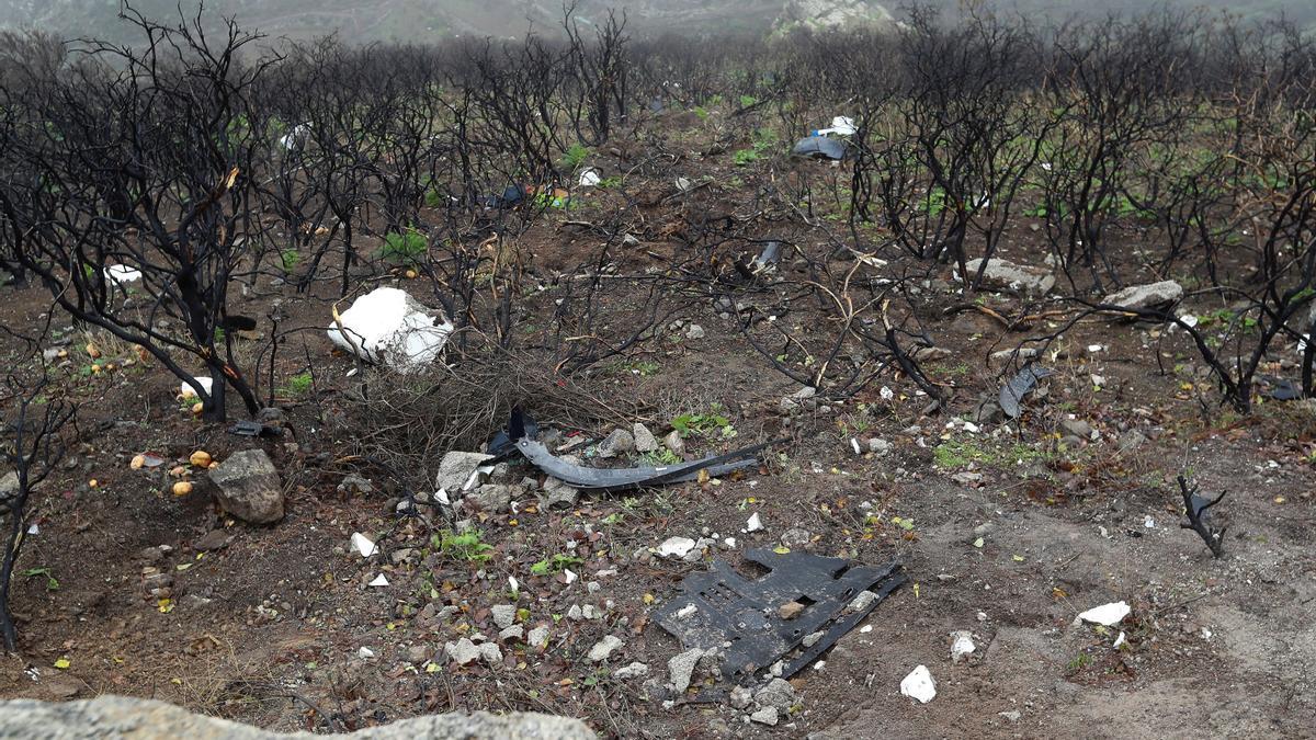 Rescatan los cuatro cadáveres de la familia despeñada en la carretera de Artenara