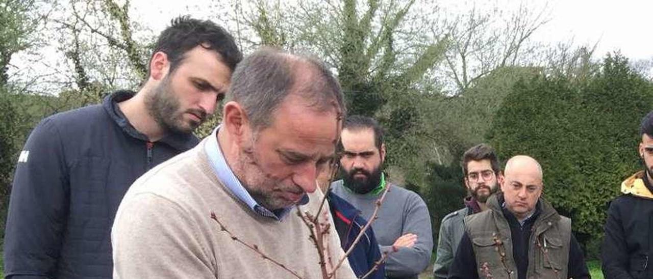 Juan Carlos García enseña a podar un arándano en la sede que el Serida tiene en Villaviciosa.
