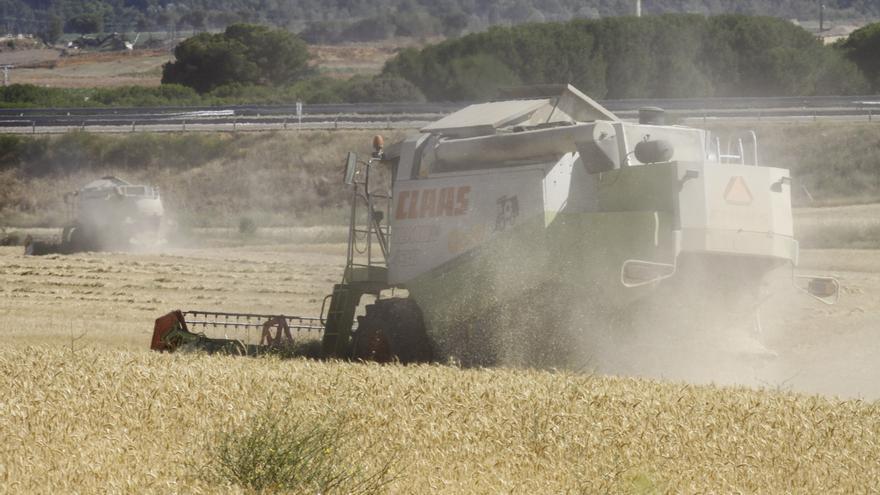 Banco Santander financió el sector agrícola de Castilla y León con 800.000 millones