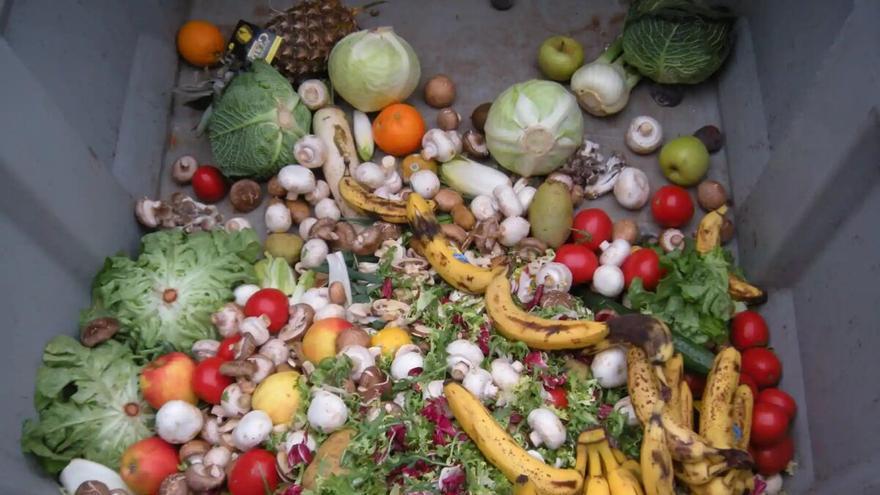 Nueva ley: multas de 150.000 euros por desperdiciar alimentos
