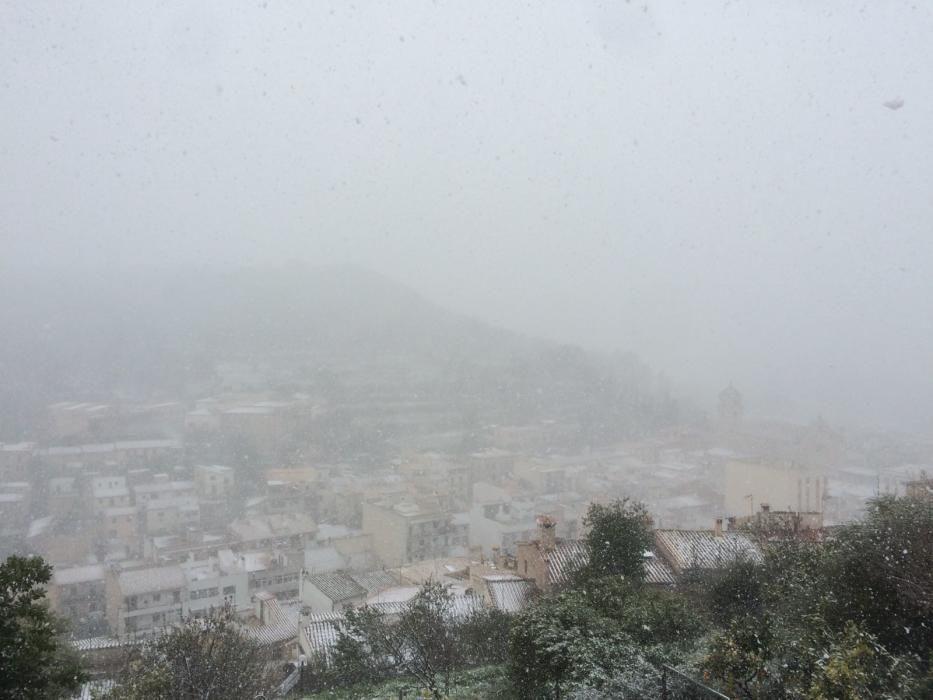 Schneefall in Bunyola: Im Laufe des Dienstagvormittags (17.1.) bedeckten die Flocken zunächst die höher gelegenen Bergpässe auf Mallorca, später auch die tiefer liegenden Gebiete der Insel. Gegen Mittag waren die ersten Strände im Inselnorden weiß bedeckt.