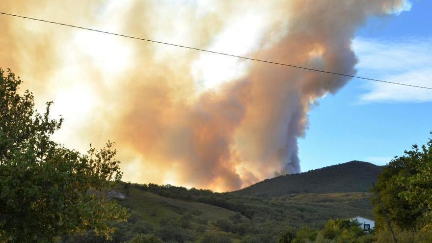 Una treintena de medios aéreos trabajan en los dos incendios en Cáceres