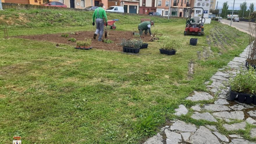 Benavente recupera un espacio verde como nueva zona de esparcimiento