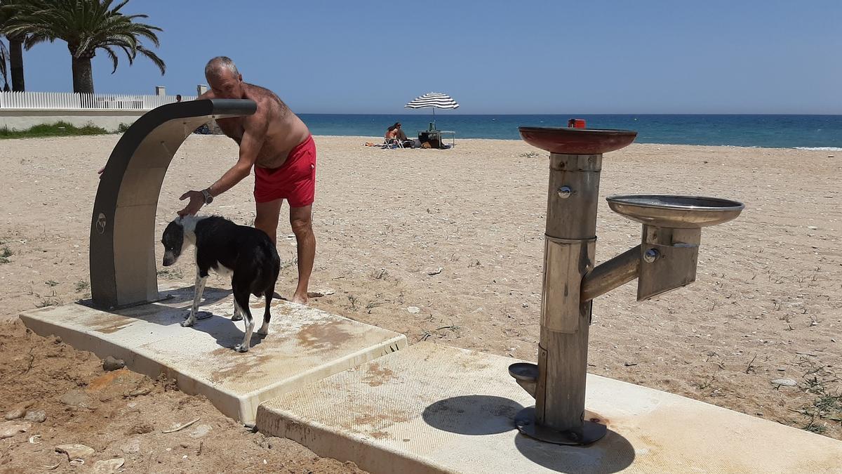 Un hombre lava a su perro en la nueva ducha canina de la playa del Barranquet.