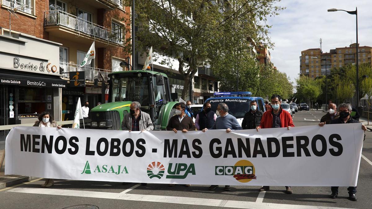 Inicio de la movilización en Zamora, este miércoles, en La Marina.