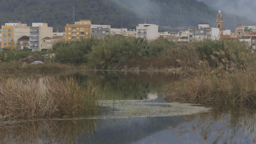 Una vía verde junto a la Séquia Travessera unirá el marjal de Xeresa y Xeraco