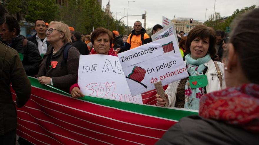 Representación zamorana en la manifestación en Madrid.
