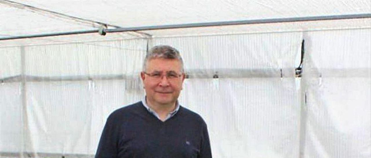 El investigador Juan José Ferreira, delante de unos plantones en el invernadero donde hacen test de resistencia a la sequía en judías.