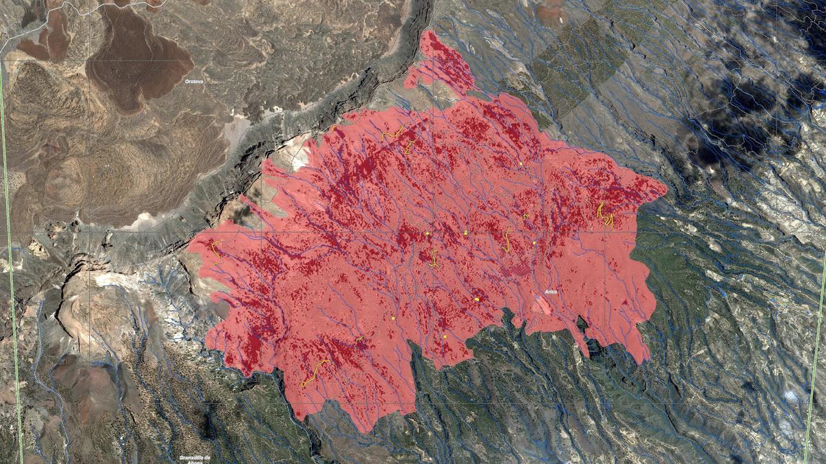 Zona dañada por el incendio forestal de Arico.