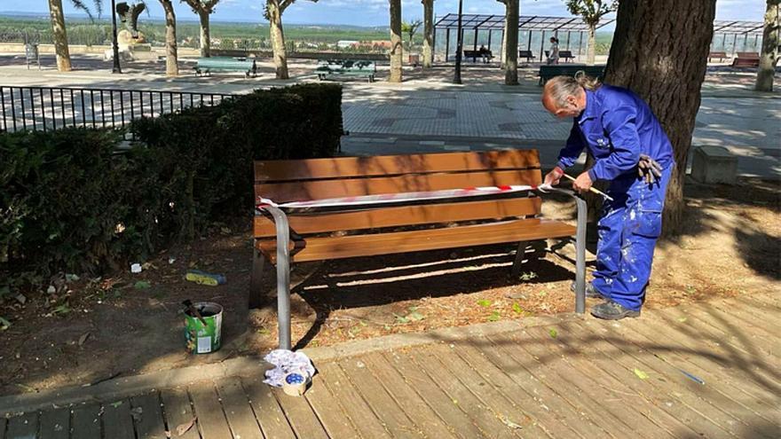 Labores de pintura y mantenimiento de los bancos de la Mota, en Benavente