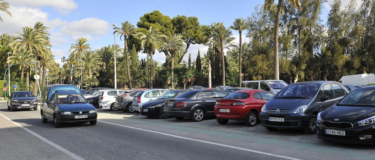 El huerto de Rostoll no tiene palmeras, solo coches desde hace años