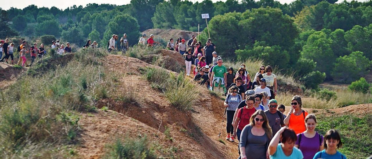 Excursión reivindicativa por el paraje de les Moles, donde se proyectaba Intu Mediterrani, celebrada hace años. | L-EMV