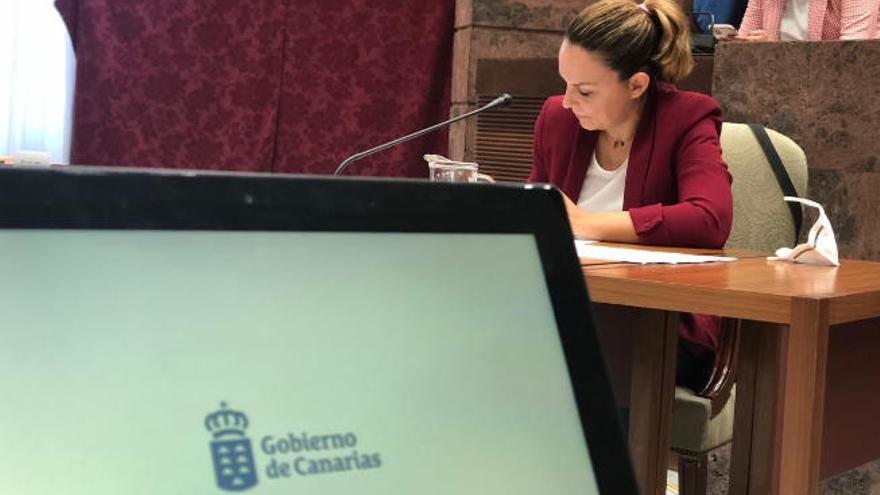 Canarias dará una paga única de 250 euros para 50.000 personas vulnerables